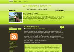 Скачать тему для WordPress -  Black Iguana