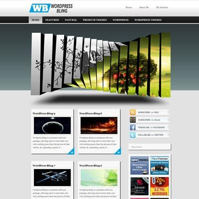 Универсальная тема WordPress WordPressBling