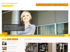 Бизнес тема WordPress MalestosiMagazine