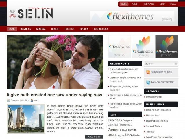 Шаблон Selin