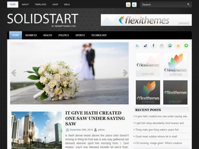 Wordpress шаблон галерея SolidStart