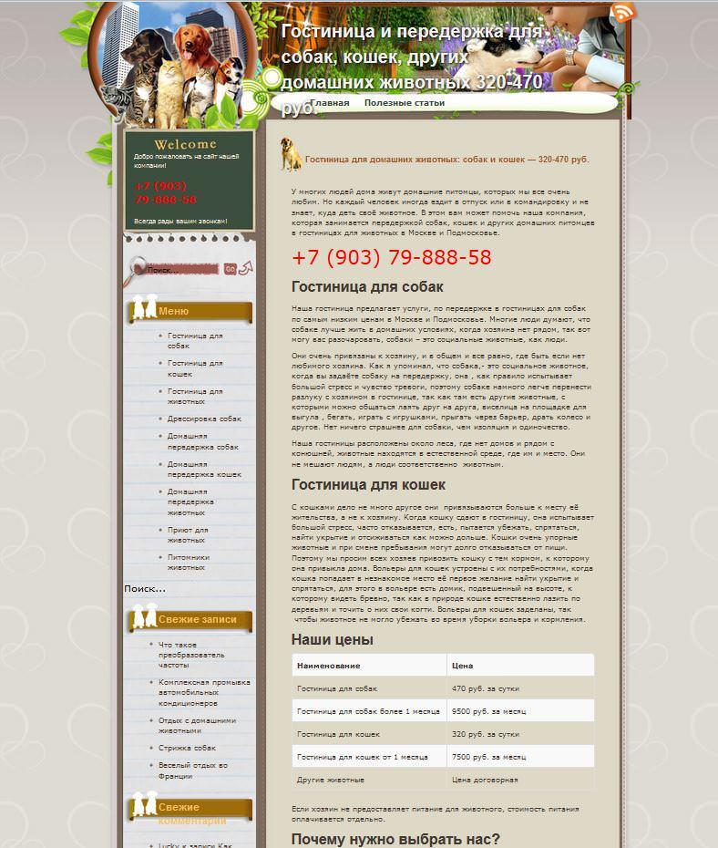 Скрин сайта на шаблоне Спирит.