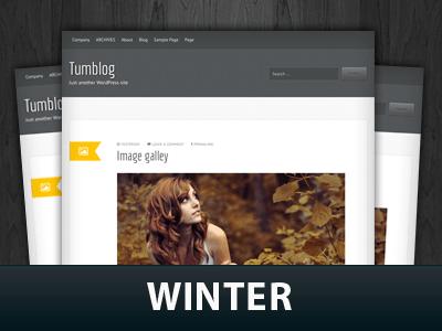 Шаблон Вордпресс персональный блог Winter