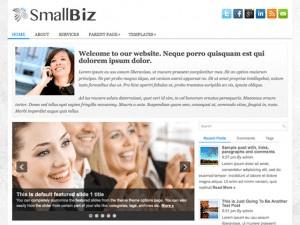 Бизнес шаблон WordPress SmallBiz