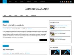 Современный WordPress шаблон AmaralesMagazine