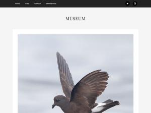 Простая Вордпресс тема Museum