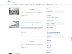 Wordpress шаблон виджеты Raze