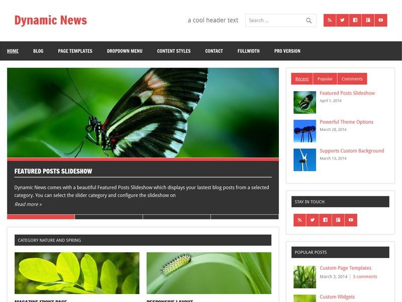 dynamic-news-lite3