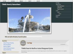Бизнес шаблон WordPress Tswebiz