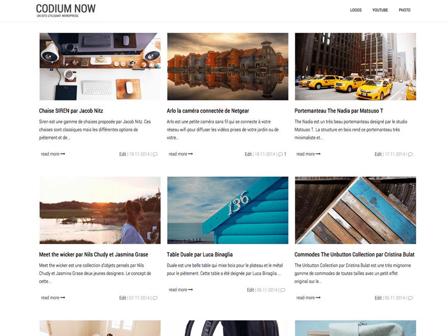 Светлый шаблон WordPress Сodium-now
