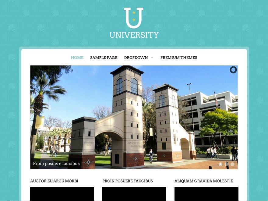 Образовательный шаблон WordPress University