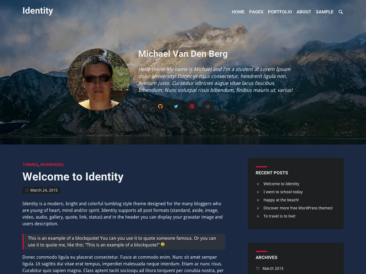 Универсальный шаблон Вордпресс Identity