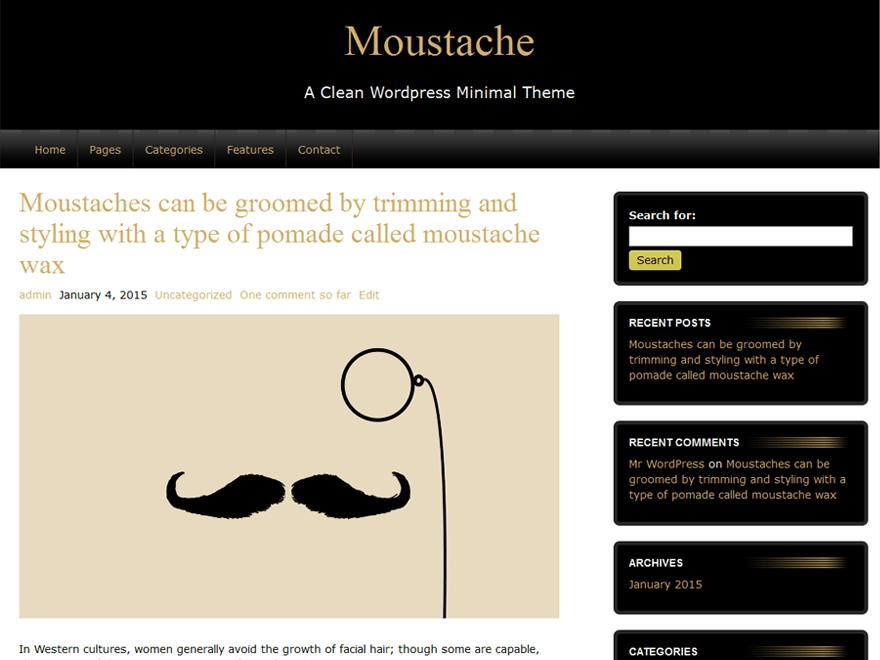 Стильный Вордпресс шаблон Moustache