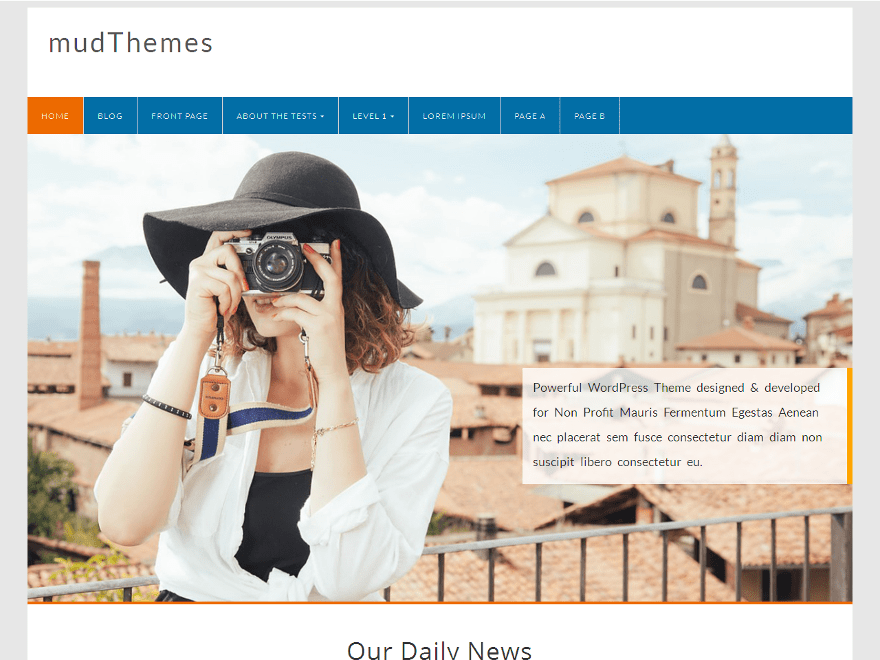 Wordpress шаблон фотография Profound