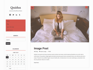 Wordpress тема виджеты Quidus