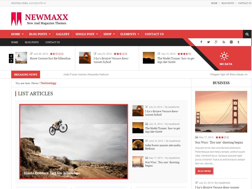 скриншот шаблона News Maxx