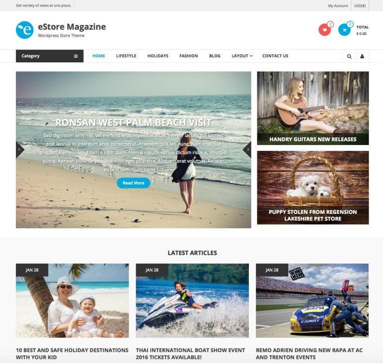 estore_free_magazine_wordpress_theme