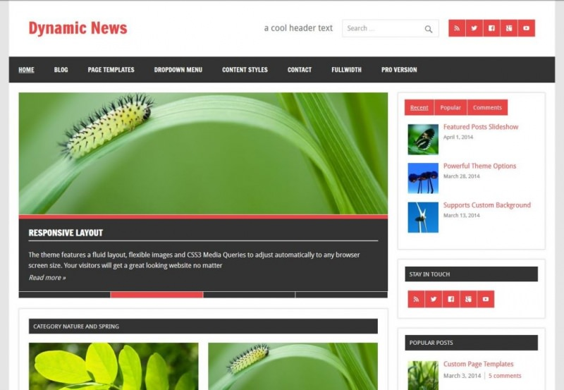 free-magazine-wordpress-theme-dynamic-news-lite