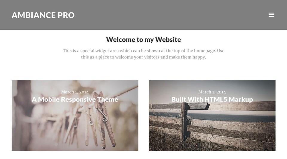 Ambiance Pro шаблон для семейного сайта.