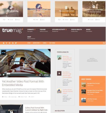 Бесплатный шаблон truemag