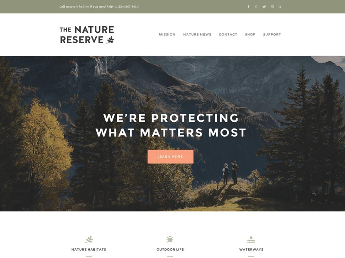 Naturelle бесплатный шаблон для WP