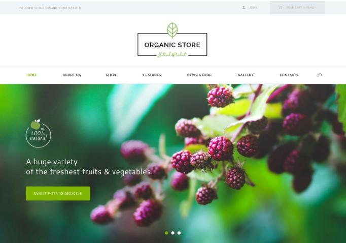 Organic Store   WordPress шаблон для магазина органических продуктов + RTL