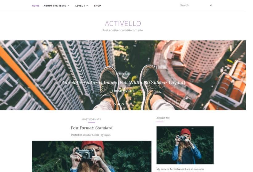 Activello тема для блога о путешествиях