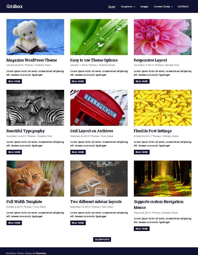 Gridbox - это бесплатный универсальный шаблон WordPress
