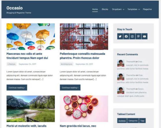 Occasio - это бесплатная современная AMP-тема WordPress