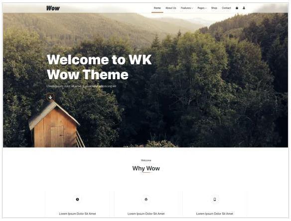 Скриншот WK Wow