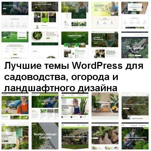 Лучшие темы WordPress для садоводства и ландшафтного дизайна 2021